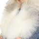 Limited Edition - Genuine Platinum Fox Fur Collar
